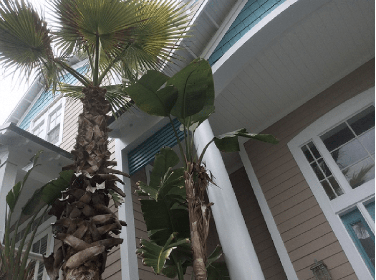 The perfect exterior colors for your jacksonville fl home for Exterior house painting jacksonville fl