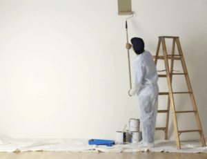 Great Professional Painting Company